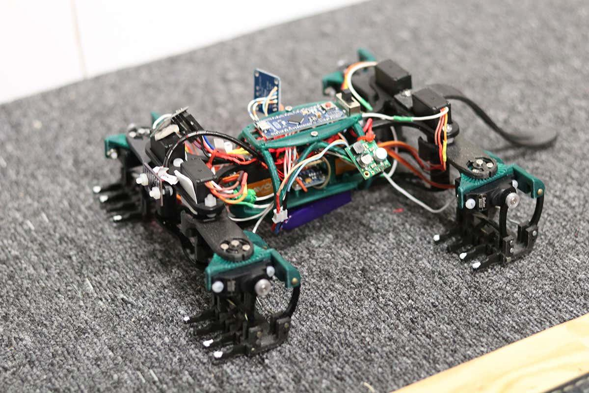 newscientist: Robot lizard can quickly climb a wall just like the real thing