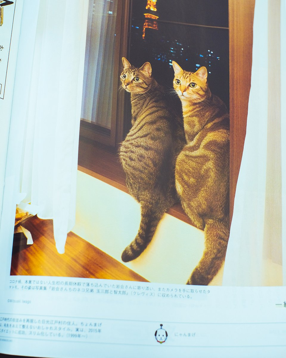 は なっ 君 だ 猫 歌詞 たん よ に な カラオケで感動!卒業ソング特集【おすすめの曲・歌詞】|hg.palaso.org
