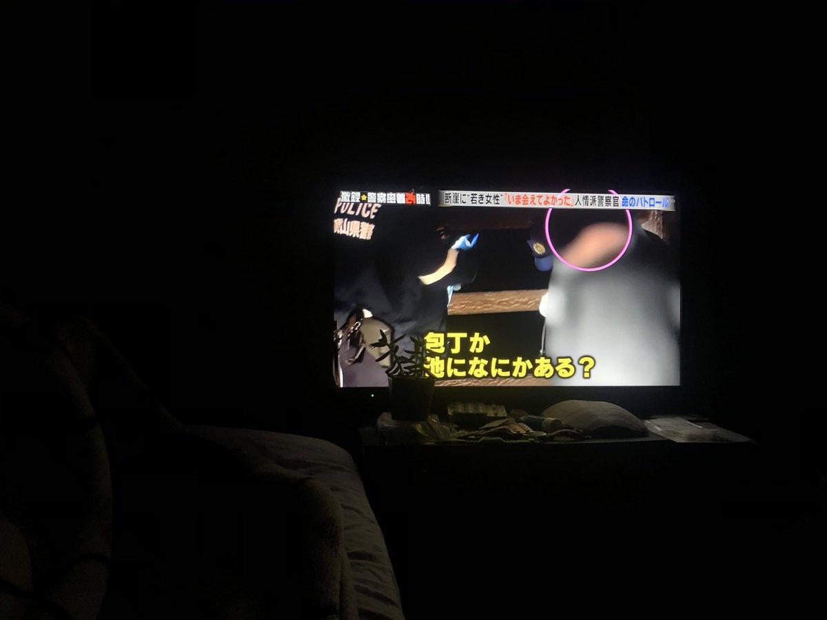 警察24時 視聴率