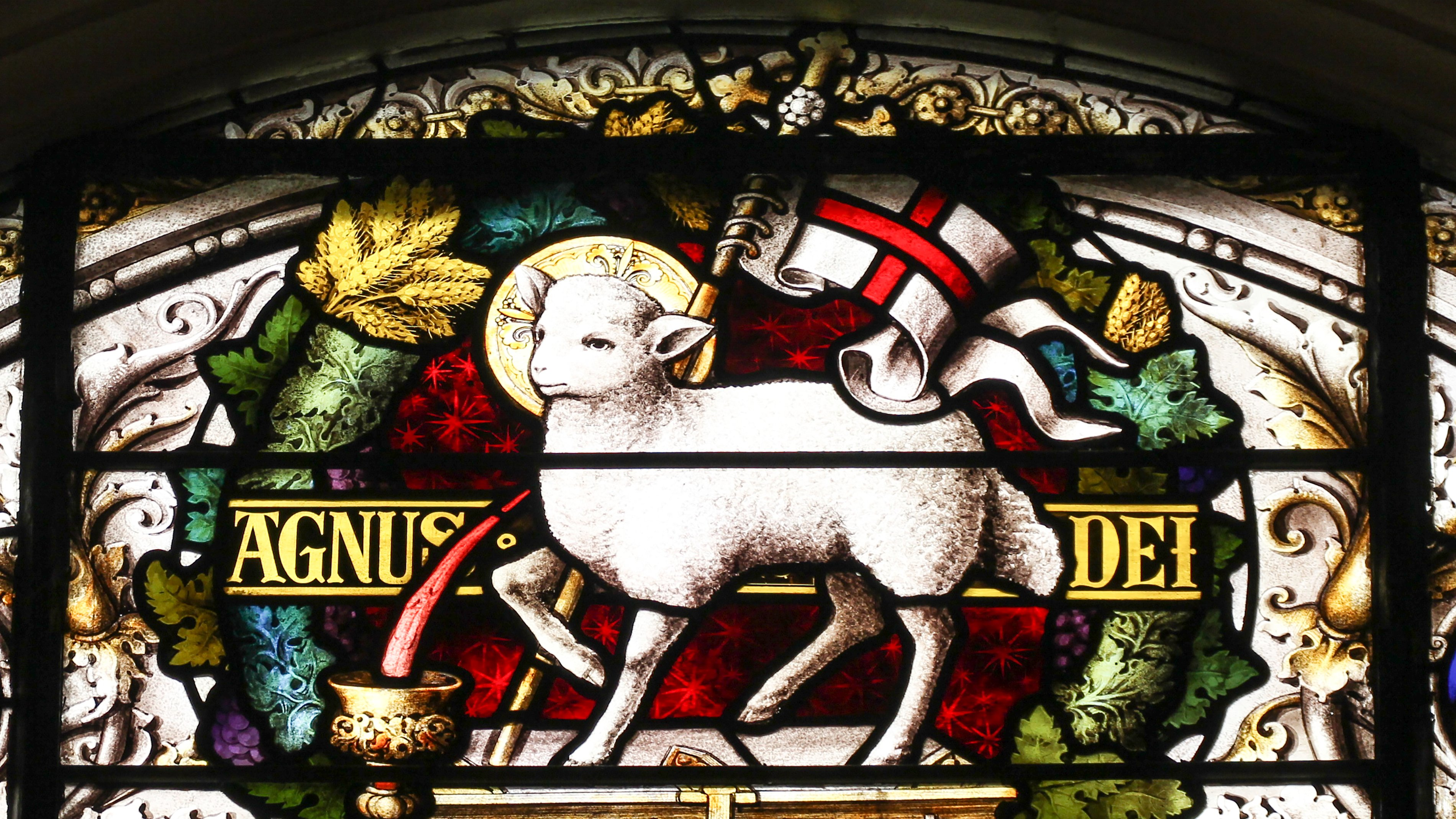 Wallpaper Agnus Dei, Lamb of God