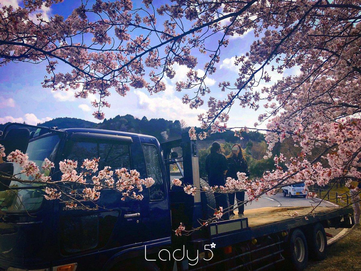Lady5_ photo