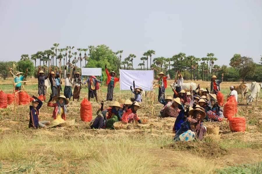 Farmers' strike from Thazi town, Mandalay Region! They are protesting from their workplace, which means paddy fields.   #WhatsHappeninglnMyanmar  #Apr7Coup #CrimesAgainstHumanity #WeNeedR2PInMyanmar #RejectMyanmarMilitaryCoup #SaveMyanmar #FreeAungSanSuuKyiAndDetainees https://t.co/P5XKBQKcYS