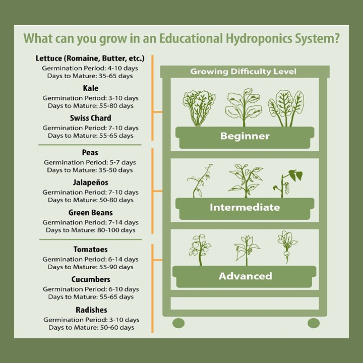 Show us what's growing in your hydroponics units. Be sure to tag us!