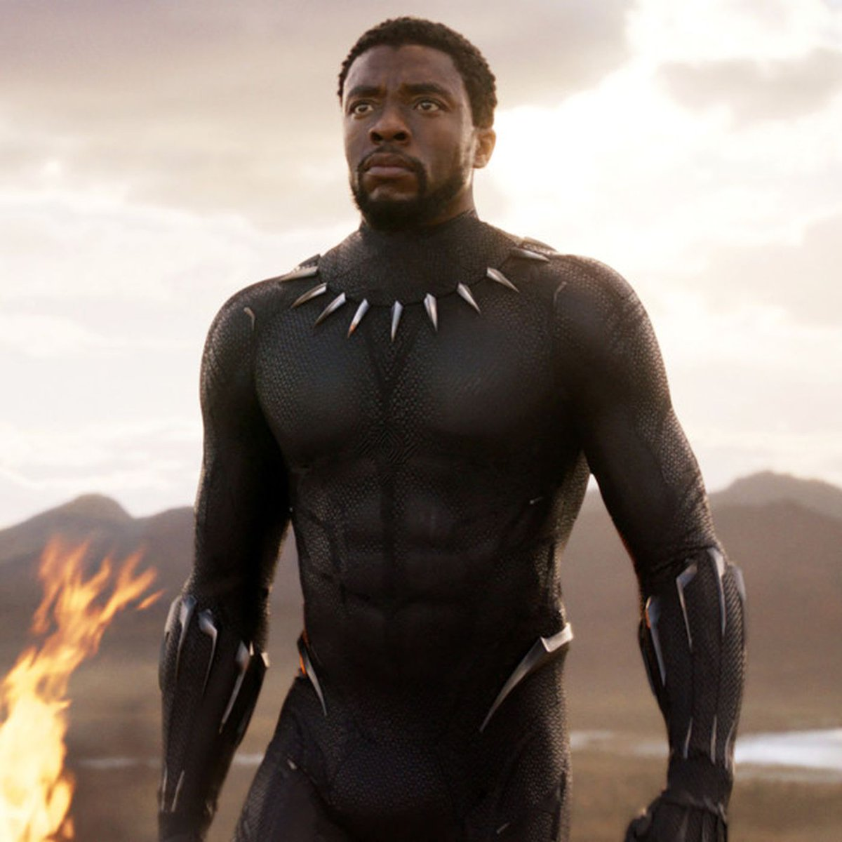 RT @Huepow00: for no particular reason today.  Can we acknowledge just how amazing Chadwick Boseman was? https://t.co/5YEP1Xt7Gh