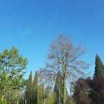 Image for the Tweet beginning: ⛅¡Buenos días! ⛅  📍Hoy en Vitoria-Gasteiz:  Min: