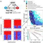 Image for the Tweet beginning: Establishment of heterochromatin in domain-size-dependent