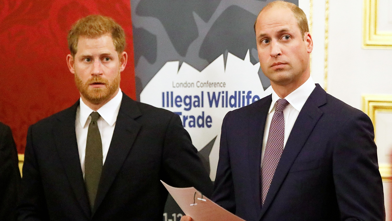 Prince William wants to reunite privately with Prince Harry before unveiling statue of Princess Diana: source Photo