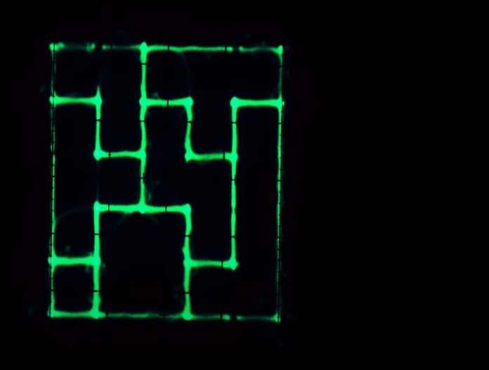 test Twitter Media - Oscilloscope Music - (Drawing with Sound)   https://t.co/iko52zE0vP  I need one of those old #Oscilloscope :-) https://t.co/NJcV4Q7T71