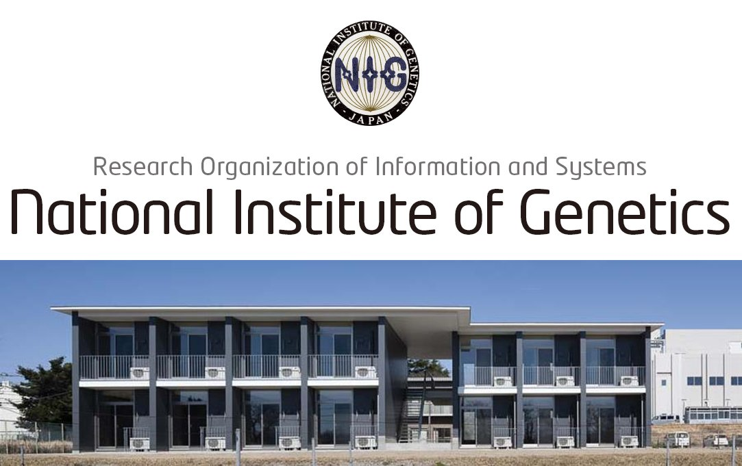 NIG Postdoctoral Fellow Position in National Institute of Genetics, Japan