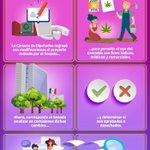 Image for the Tweet beginning: El @senadomexicano busca que la
