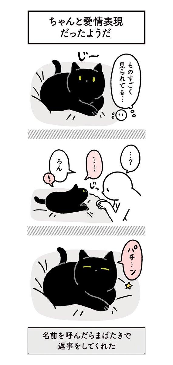 愛猫から愛情表現を浴びるように受けてる絵日記が可愛すぎるw