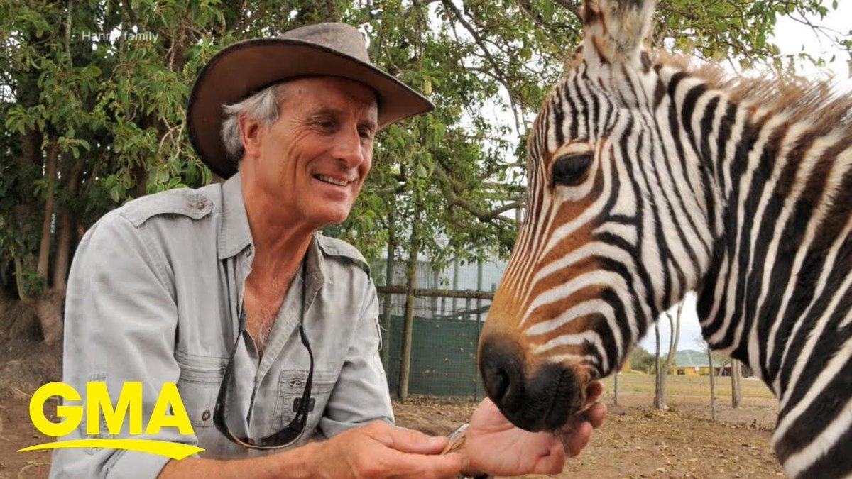 Beloved Columbus Zoo director Jack Hanna's dementia diagnosis l GMA - Good Morning America https://t.co/C6gqmgD3Ok https://t.co/2sCheAaUFY