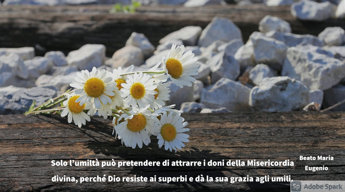NostraSignorad1 photo