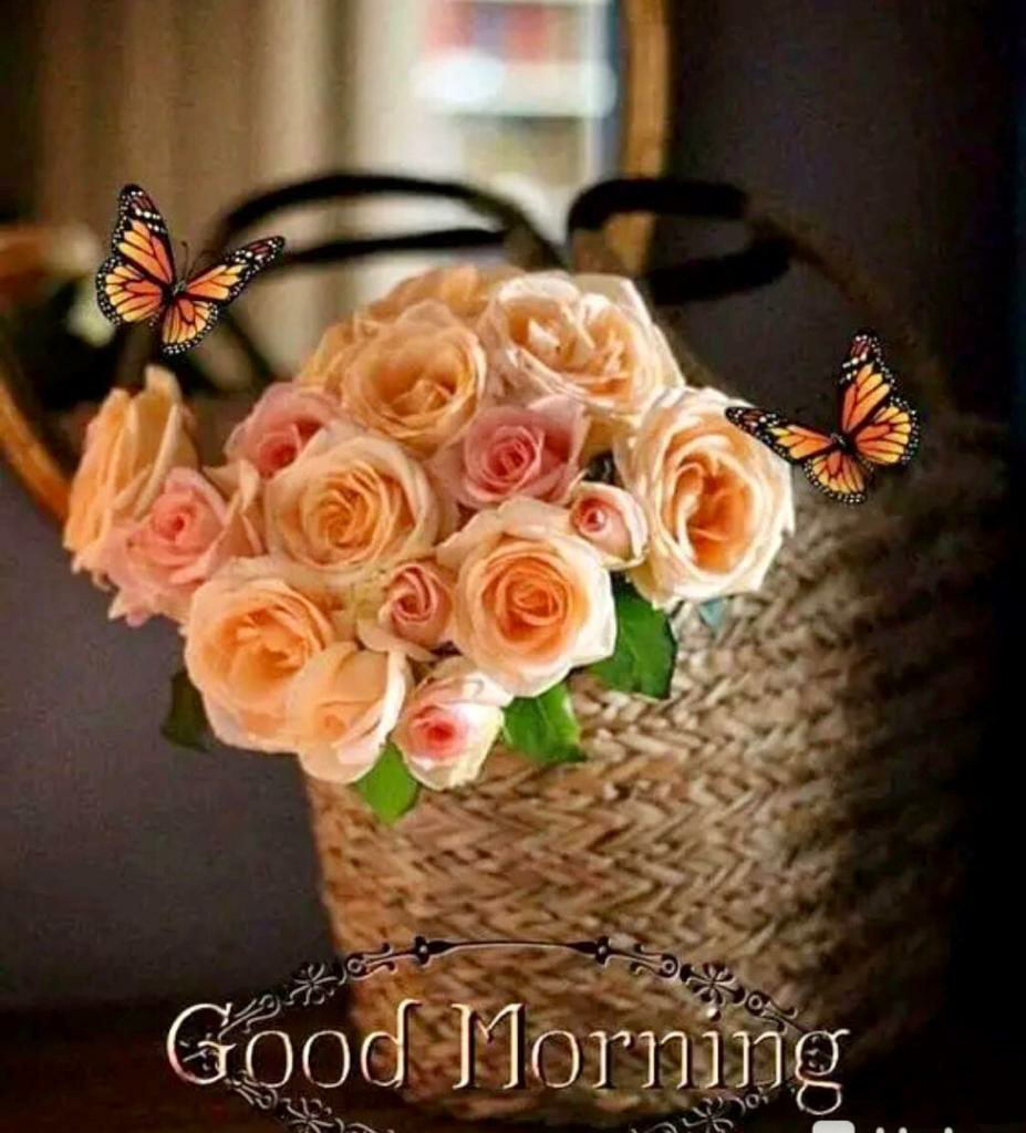 """GM @SrBachchan Boss Thought for 2day """"Motivation is what gets you started. Habit is what keeps you going"""" Have a peaceful Sunday💐💕🌹💕 Love & Regards ~ प्रवीण आहूजा (नॉएडा)"""