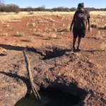 It was one of many highlights of being on country with @ClintonFarmer7, Birriliburu Rangers Petrina Morgan (pictured) & Leithan Williams, and @stellaship @BushHeritageAus — visiting a rock hole full of water, and attracted wildlife. #RightWayScience #TwoWayScience #MartuCountry