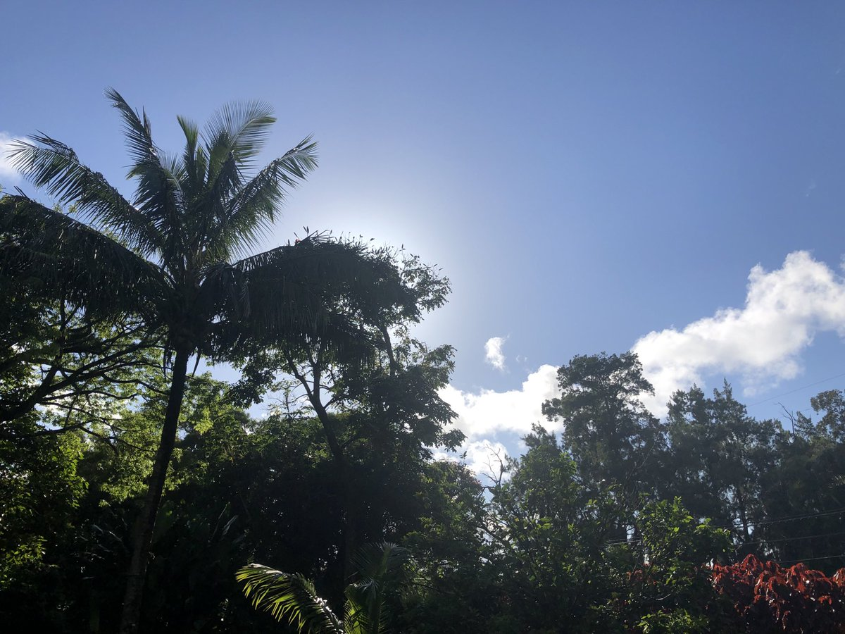 test Twitter Media - Blue skies back again in haiku. #CMWeather #Maui #Haiku #SunnySunday #MagicalMaui https://t.co/deDGgsdEzI