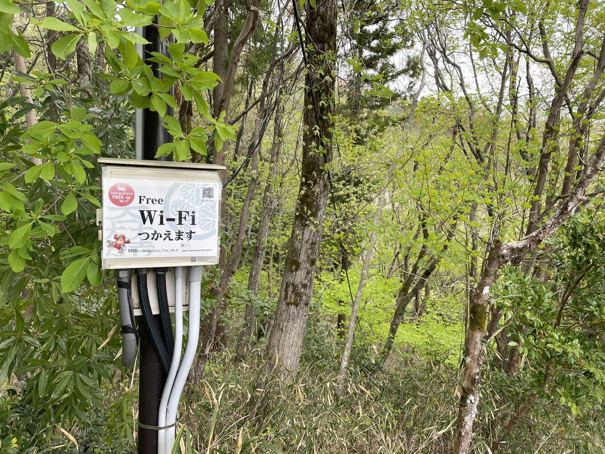 近代化はこんなところにも?石田三成陣地でWi-Fiが使える!
