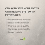 Adding CBD to your regular routine could be life changing, if we do say so ourselves 😉 #Gaia #HempOil #CBDOil #CBD