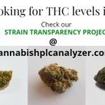 #hplc #testing #Mmemberville #CannabisNews #Hemp #Canna #Europe #USA #CannabisCommunity #cbdproduct #fruitypebbles #cannagrower #cannabisculture #cannabisindustry #usa #europe #testing #cannabinoids #cbdoil #Spain #hempoil #hempgrower #hempfarmer