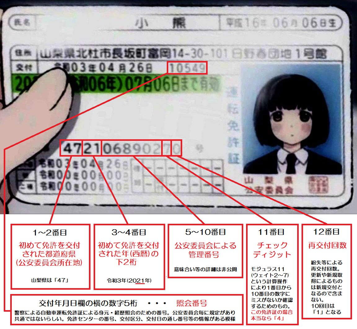 免許証に記載されている12桁の免許証番号には?それぞれ意味がある!