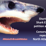 Image for the Tweet beginning: 🦈 News: @NOAAFisheries finds petition