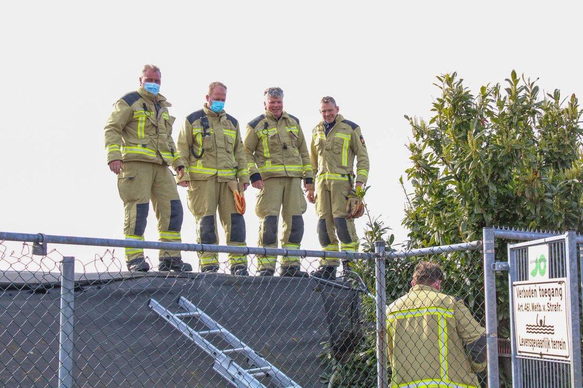 Brandweer redt konijn uit mestbassin - #Drenthe -..