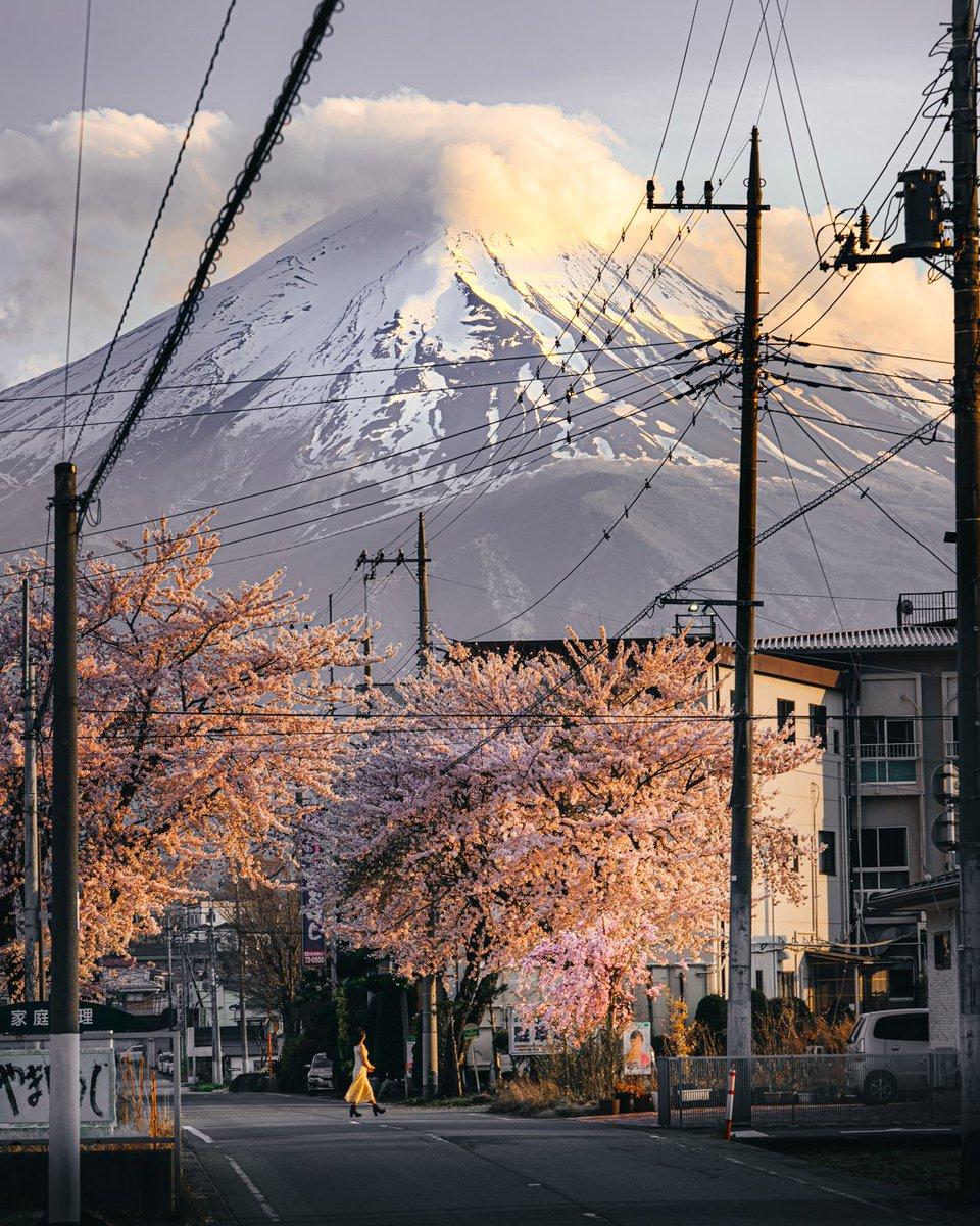 yuki_yuki_1216 photo