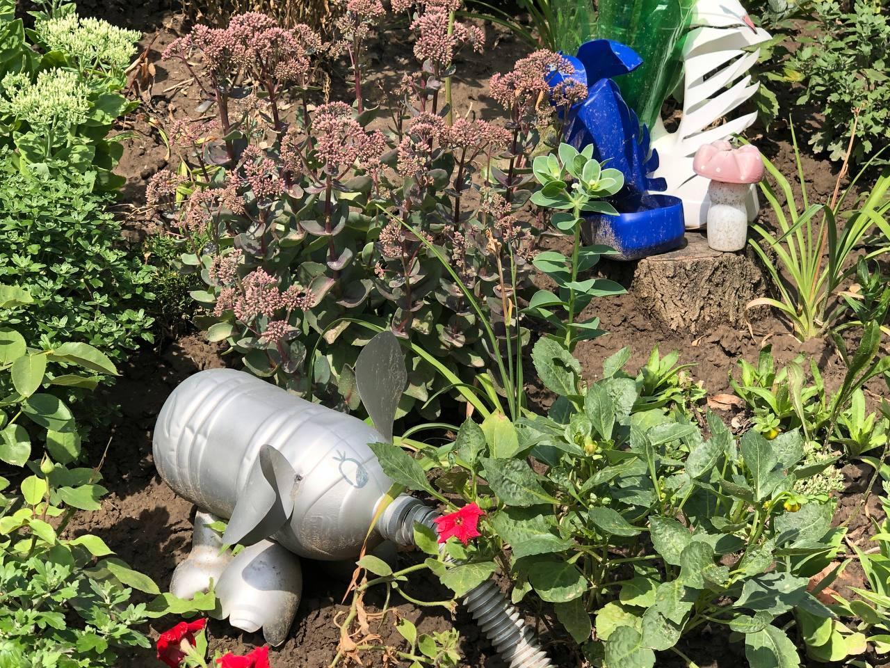Мешканка Нікополя створила квітучий сад навколо багатоповерхівки