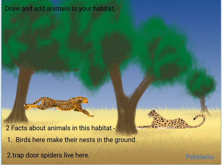 2nd graders researched Animal Habitats in library using <a target='_blank' href='http://twitter.com/CapstonePub'>@CapstonePub</a>'s PebbleGo and then illustrated a habitat in <a target='_blank' href='http://twitter.com/Tech4Learning'>@Tech4Learning</a>'s Wixie.  See more projects by viewing the showcase - <a target='_blank' href='https://t.co/v6sjuvGhjt'>https://t.co/v6sjuvGhjt</a> <a target='_blank' href='http://twitter.com/APSLibrarians'>@APSLibrarians</a> <a target='_blank' href='http://twitter.com/APSscience'>@APSscience</a> <a target='_blank' href='http://twitter.com/SohrAPS'>@SohrAPS</a> <a target='_blank' href='http://twitter.com/KWBLittman'>@KWBLittman</a> <a target='_blank' href='http://twitter.com/lsullivan'>@lsullivan</a>  <a target='_blank' href='http://search.twitter.com/search?q=kwbpride'><a target='_blank' href='https://twitter.com/hashtag/kwbpride?src=hash'>#kwbpride</a></a> <a target='_blank' href='https://t.co/nOkaFA9GAd'>https://t.co/nOkaFA9GAd</a>