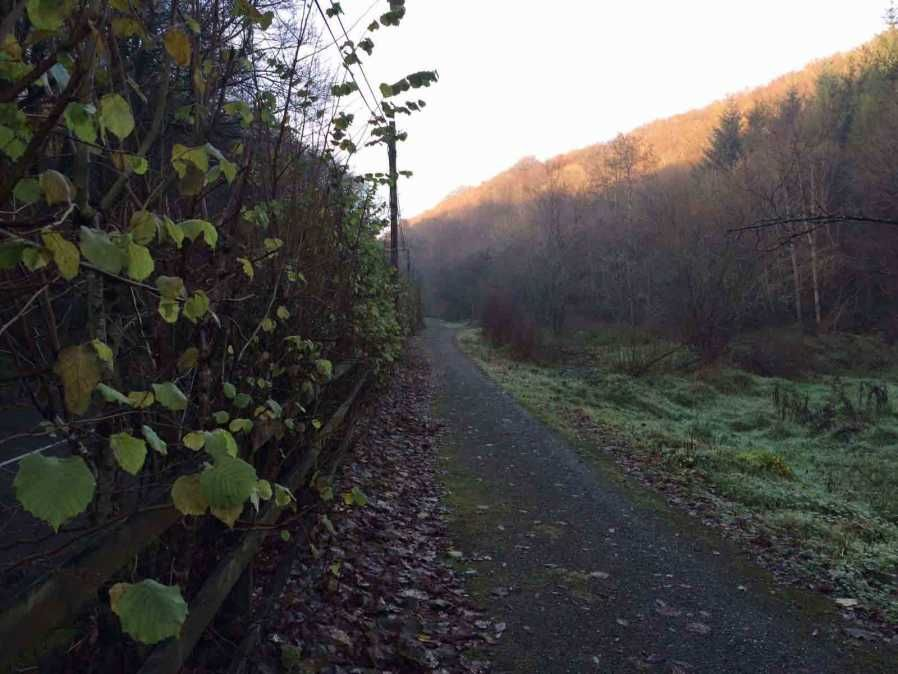 If you are looking for a new walk in Cork, I would highly recommend the Blarney to Waterloo Walk. This a great walking trail with great woods on both sides and running along the Shournagh River for a couple of miles. https://t.co/aUBDasUJ2C #Cork #CountyTravel https://t.co/n1o4N5jchN