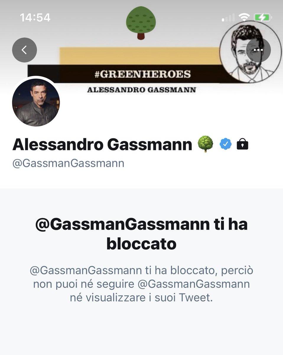 #Gassman
