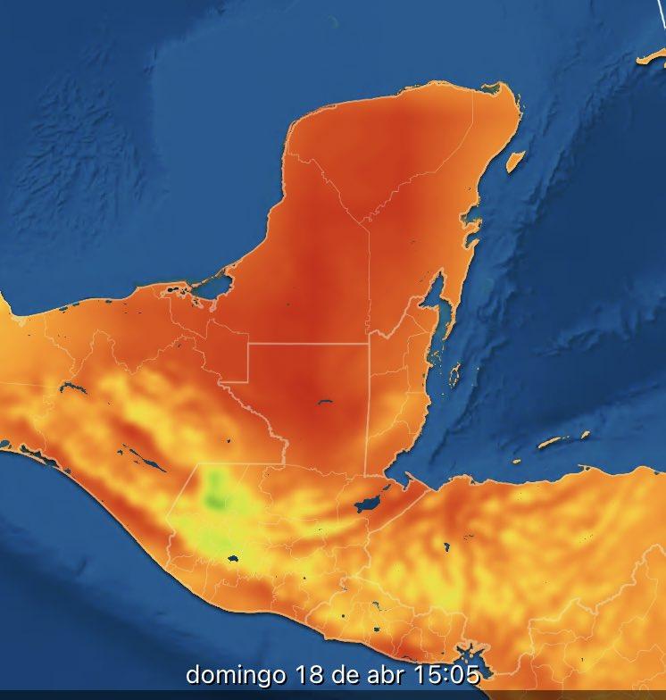 Con esto la aproximación  de más sargazo en la Costa de Quintana  Roo. No es nada nuevo si ya se sabe sigan los protocolos  SRS.