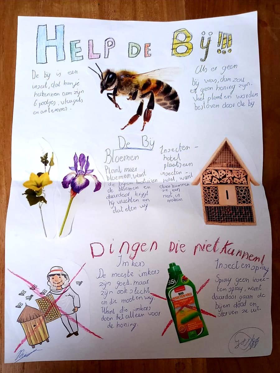 test Twitter Media - Bovenbouw leerlingen hebben in de plusklas het belang van de bij onderzocht en gekeken hoe ze de bij kunnen helpen. Er zijn prachtige posters gemaakt.  Binnenkort ontwerpen de kinderen een eigen bijenhotel en maken een handleiding voor geïnteresseerden. https://t.co/0m6XfNXqj3 https://t.co/sJ04QXqzdb