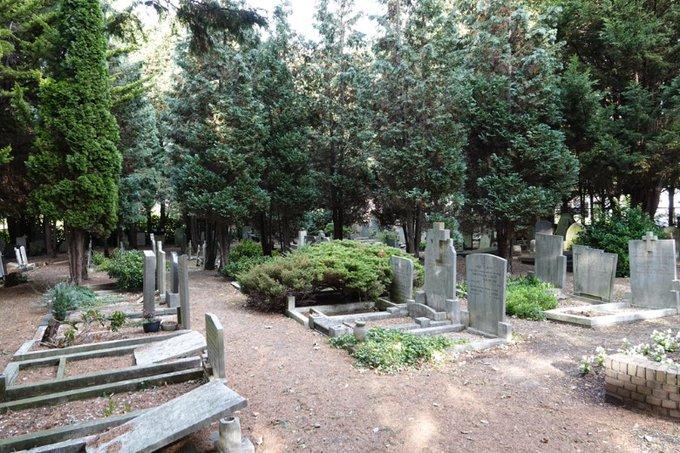 Begraafplaats aan de Dijkweg wordt geruimd https://t.co/WG9zyZXLqr https://t.co/GlVy8mBqyk