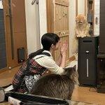 洗面所に閉じ込められて凹む猫の表情に注目!思わず笑ってしまう落ち込み具合がすごい!