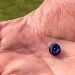 Image for the Tweet beginning: A tiny cobalt blue glass