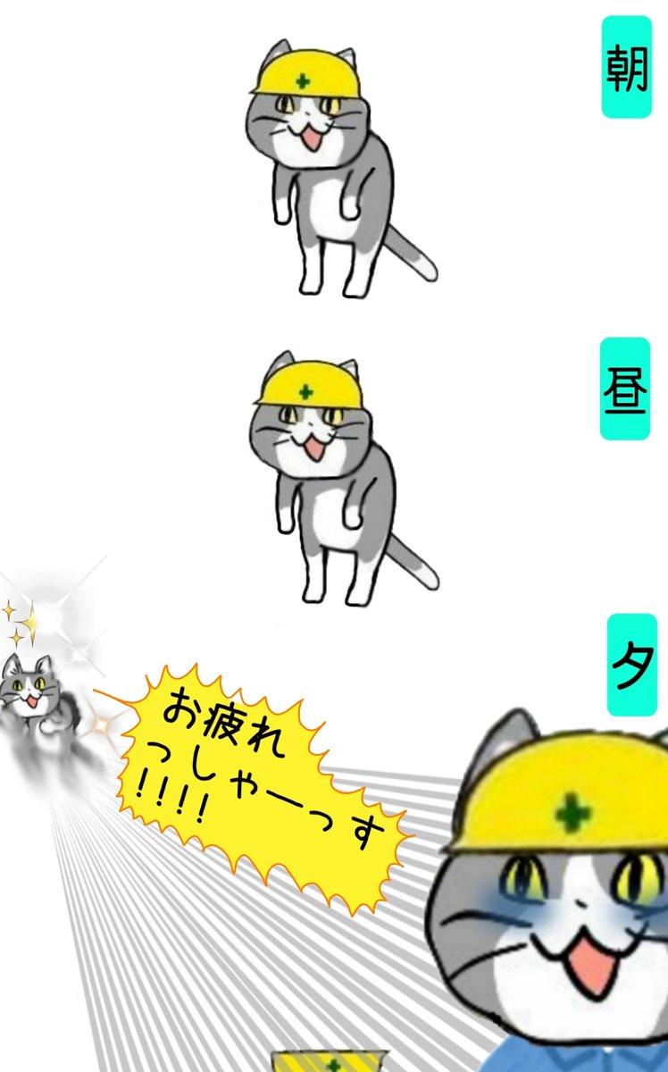 猫 どうして 現場 【ヨシ!】完売続出の「現場猫」ガチャを探しに行ってきた