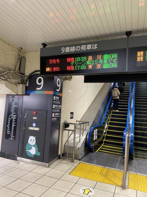 【上級国民専用列車?】特急ときわ80号上野発東京行きが運転 一体なぜ?