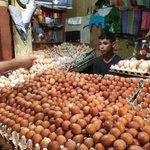 モロッコで見かけた卵屋さん!卵が多すぎて精気を失ってしまう…