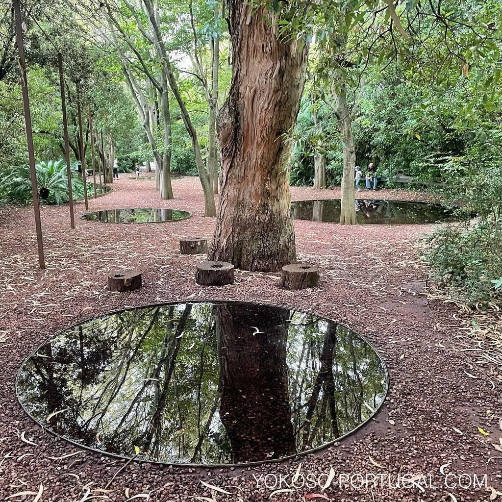 test ツイッターメディア - 都会のオアシス、リスボンのグルベンキアン美術館の庭園は、有名建築家の隈研吾氏デザインにより生まれかわります。来年完成予定です。美術館を訪れた際は庭園のお散歩もお忘れなく。#ポルトガル #リスボン https://t.co/HyWPrqK9wE