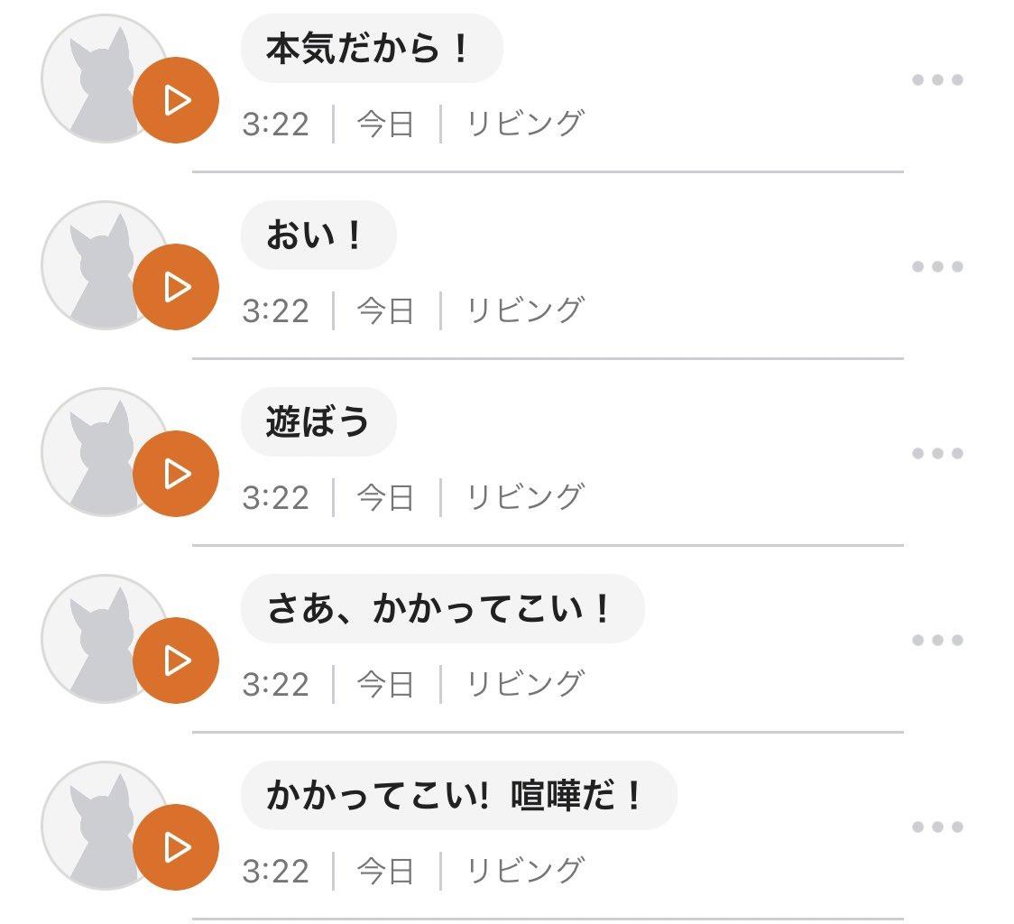 猫語翻訳が面白い!気になって使ってみたら喧嘩を売られていたことが判明!