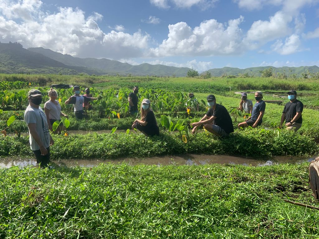 """""""The hire would incorporate both western and indigenous scientific knowledge systems to facilitate the preservation and protection of freshwater resources in support of the livelihoods and traditional practices of Native Hawaiians."""" https://t.co/RXv4RFbGsw"""