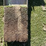 Image for the Tweet beginning: That's a wrap, final #dryject