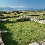 Image for the Tweet beginning: Criminalità organizzata e scavi archeologici
