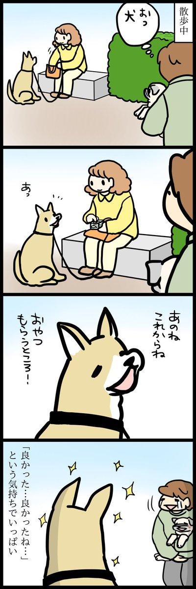 犬がすごい良かった話です