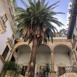 Image for the Tweet beginning: #Palermo