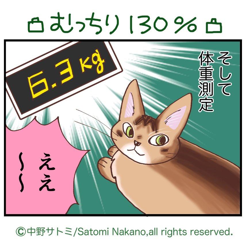 前回のnote公開分です更新!#そのネココゲタ?ep91 ダイエット大作戦編 その21年で巨漢に!😭大反省しました!note でまとめて連載中#猫がいる暮らし #猫漫画