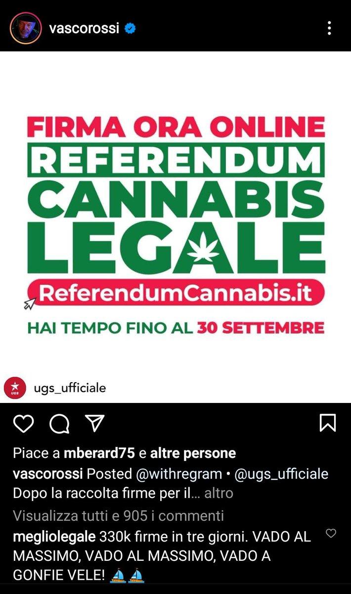 #ReferendumCannabis