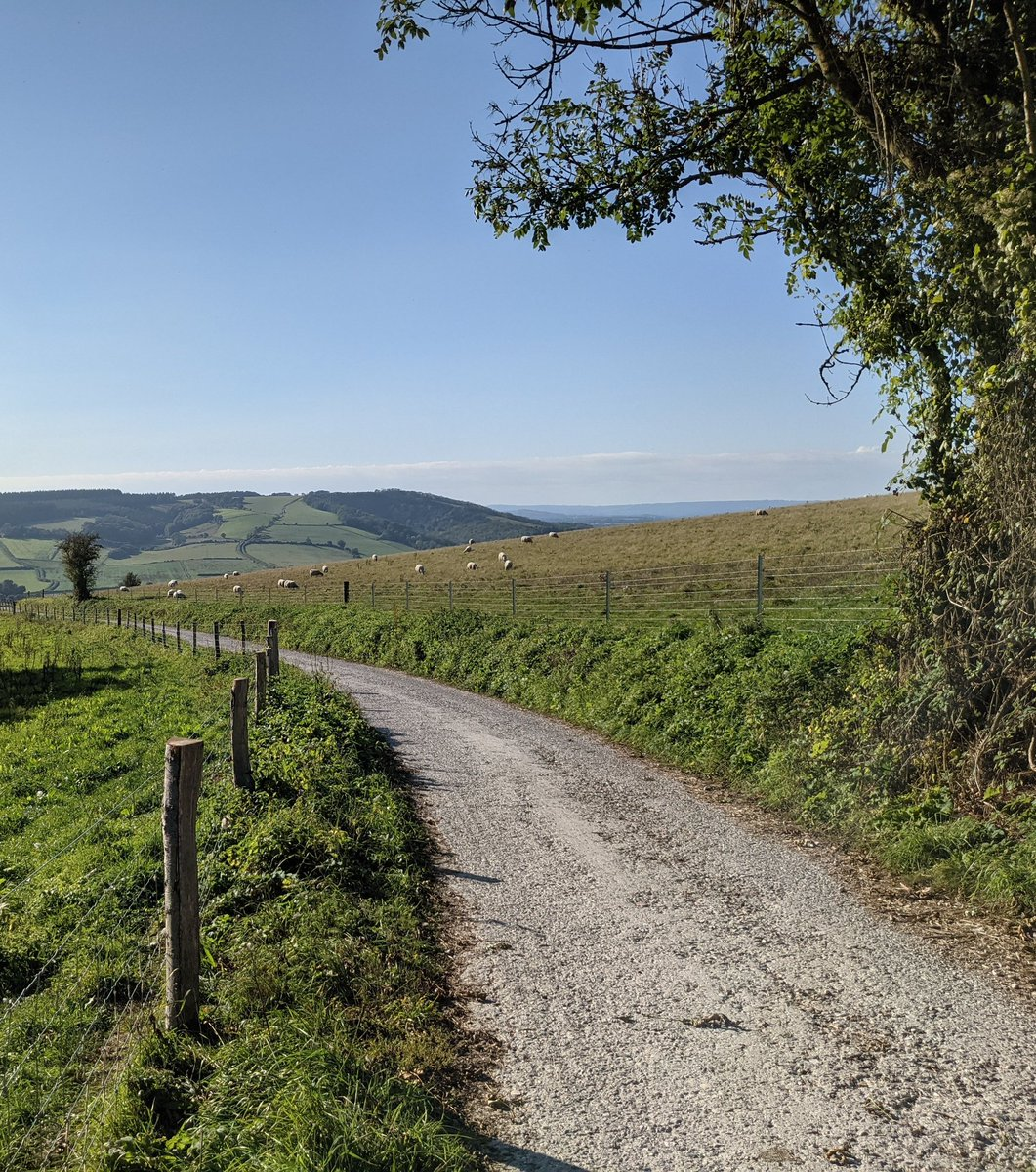The long and winding #SouthDownsWay...