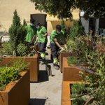 Image for the Tweet beginning: El Ayuntamiento de Pamplona mantiene
